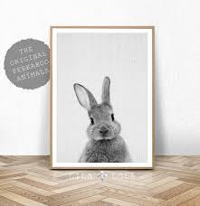 Rabbit Home Decor Rabbit Print Baby Animal Prints Woodland Nursery Decor