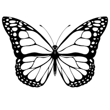 butterfly outline stencil monarch and silhouette printable