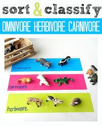 omnivore carnivore herbivore worksheet fioradesignstudio