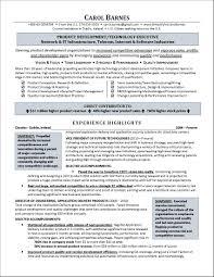 adorable resume examples executive director non profit about