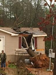 michaela remus killed by christmas storms that sent a tree through