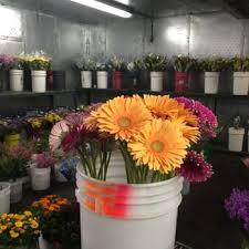 fresh flowers in bulk fresh flowers wholesale 105 photos 54 reviews florists