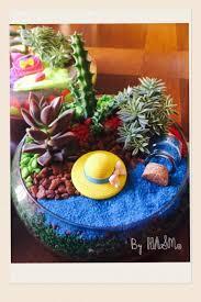 resume modernos terrarios suculentas 43 mejores imágenes de plantas en pinterest jardinería
