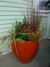 Plant Combination Ideas For Container Gardens Winter Container Combos Portland Monthly