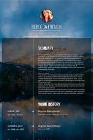 Sample Resume For Regional Sales Manager by Regional Sales Director Resume Samples Visualcv Resume Samples