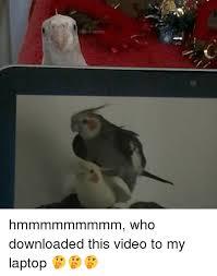 Meme Laptop - irb memes hmmmmmmmmm who downloaded this video to my laptop