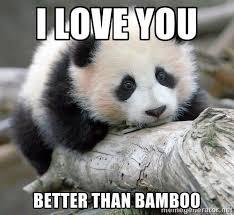 Panda Meme - panda memes google search cute pinterest panda memes and