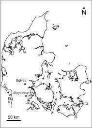 Map Of Denmark Karin Margarita Frei Professor The National Museum Of Denmark