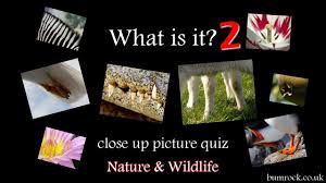 what is it 2 up picture quiz hd family quiz