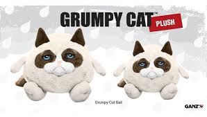 Grumpy Cat Meme I Had Fun Once - plush grumpy cat is a perfect gift for the scrooge in your life