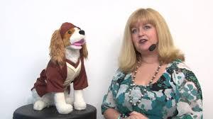 star wars jedi robe dog costume youtube