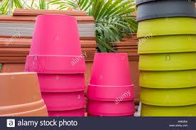 K He Pink Vibrant Greenhouse Stock Photos U0026 Vibrant Greenhouse Stock Images