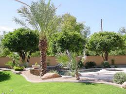 large backyard design with desert landscaping themes homescorner com