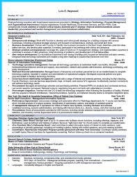 It Specialist Resume Examples Security Professional Resume It Engineer Glo Peppapp