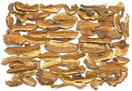 cuisine cepes dried cepes stock photo image of organic edible preserved 32311926