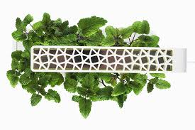 click and grow shgs1 smart herb garden white amazon co uk