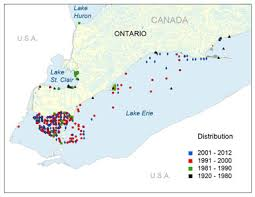 canadian map with great lakes silver chub great lakes st populations