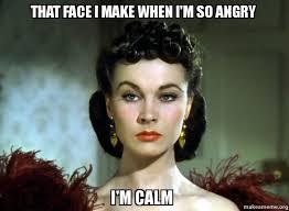 Calm Meme - that face i make when i m so angry i m calm make a meme