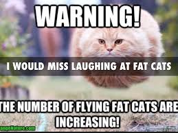 Flying Cat Meme - journal 4 by michael barnes