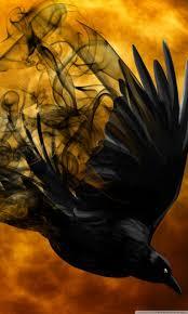 halloween raven hd desktop wallpaper widescreen high