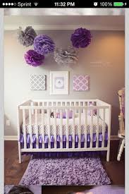 best 25 purple baby ideas on purple baby bedding