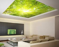 trompe l oeil chambre 20 impressionnant papier peint trompe l oeil chambre image cokhiin com