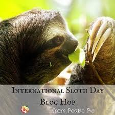 it science international sloth day amazing adaptations