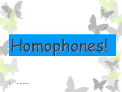 homophones lessons with lesson plan and activities by wwhaley