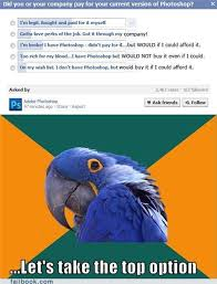 paranoid parrot ain t telling you jack adobe randomoverload