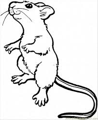 coloring page of a rat rat coloring pages coloring pages rat 7 animals mammals free