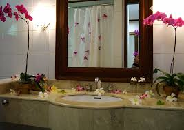 Home Decor Australia 100 Cute Apartment Bathroom Ideas Inspirational Apartment