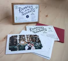 seed cards 4 x6 diy photo frame kit set of 6 planted thoughts