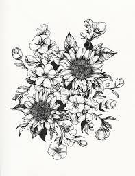 drawn wildflower daisy bouquet pencil and in color drawn