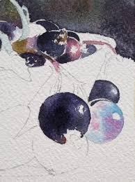 aquarelle facile magazine cassis u0026 groseilles en rouge et noir