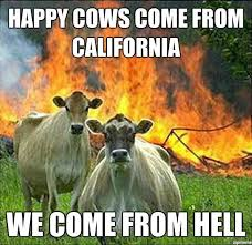 California Meme - happy cows come from california weknowmemes