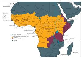 Angola Map Angola U0027s Yellow Fever Outbreak Explained African Independent