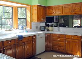 Do I Paint My Kitchen Cabinets I Need Your Opinion Hometalk - Painting my kitchen cabinets