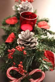 free images winter petal foliage green pinecone money