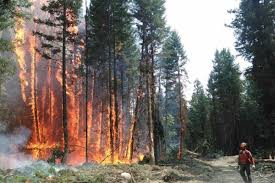 Wildfire Kootenays by Weather Forecast Concerns Wildfire Officials Nelson Star