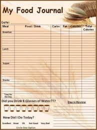 5 free food journal templates excel pdf formats