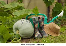 leaf tool object garden ground soil earth humus leaves agriculture