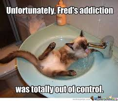 Drug Addict Meme - drug addict memes best collection of funny drug addict pictures