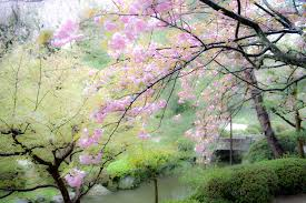 2016 canvas painting building japan cherry blossoms flowers
