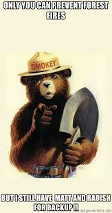 Only You Can Prevent Forest Fires Meme - only you can prevent forest fires but i still have matt and radish