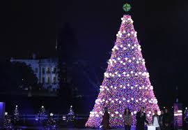 the lighting of the christmas tree christmas lights decoration