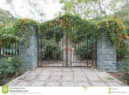 garden gate flowers wrought iron gate and flowers iron fence stock photo image