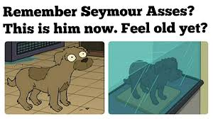 Meme Feel - futurama meme seymour feel old yet on bingememe