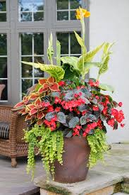 Summer Flower Garden Ideas - 257 best 2017 outdoor planters images on pinterest gardening