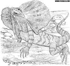 underwater dinosaurs coloring pages lizard coloring page by yuckles