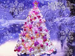 beautiful merry tree pictures merry images